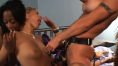 Three lustful and horny cougars use a myriad of sex toys to satisfy each other's needs