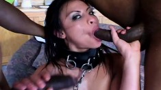 Brunette slave is chained on a leash to pleasure her two masters