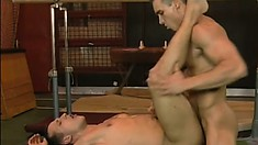 Limber gay lovers with great muscles make each other moan hard