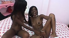 Pussy-licking black lesbians can't get enough of each other's muffs