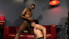Black and white cocks trade mouths before the black dick hits white butt