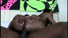 Ebony beauty with a sublime ass Cinna Bunz is a sucker for black cock