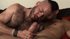 Justin K & Lucas D can't wait to suck each other's monster boners