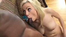 The busty Adrianna Nicole gets her ass fucked by a black guy