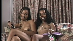 Two cute ebony lesbians hook up on the couch and please each other's wet pussies