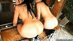 The sexy babes rub their oiled up asses against each other and get pretty excited